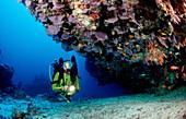 Scuba diver and Coral reef, Maldives, Indian Ocean, Meemu Atoll