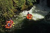 White water rafting, Kaituna River, Schlauchbootfahrt, Wildwasser, bei Rotorua