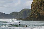 Piha Beach and Lion Rock, west coast near Auckland, New Zealand
