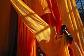 Saristoffe werden nach dem Färben, und Trocknen abgehängt Rajasthan, Indien