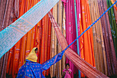 Sari production, Pali, Rajasthan, India