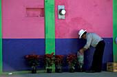 Man Selling flowers, Coatepec, Veracruz, Mexico