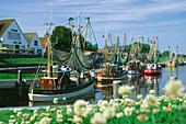 Fishing boats at Greetsiel harbor, Eastern Frisia, Lower Saxony, Germany