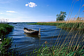 Empty rowing boat, Lieper Winkel, Isle of Usedom, Mecklenburg-Pomerania, Germany