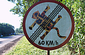 Beware of animals, humorous traffic sign, warning sign, Iguassu National Park, Brazil, South America