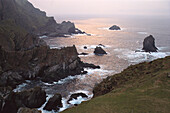 Rocky coast in the evening, Hermanness, northern point, Unst, Shetland Islands, Scotland, Great Britain