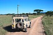 Serengeti Lions Research Project, Jeep , Serengeti NP Tansania