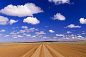 Straight Road in dry plain, Tibooburra, New South Wales, Australia
