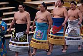 Sumo, Olympics ´98, Nagano Japan