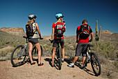 Three people on a mountainbike tour, admiring the view, Mountainbike Apache Trail, Arizona, USA