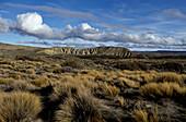 Steppe, vast plains, Patagonia, Argentina