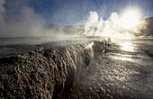 Steaming geyser in the sunlight, Géiser del Tatio, Del Tatio, Chile, South America, America