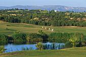 Citrus Golfplatz, Hammamet Tunesien