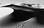 Sandhills, Grand Erg Occidental Sahara, Algeria
