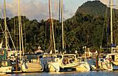 Hamilton Island yachting haven, Australien, Queensland, Hamilton Island, Barrier Reef