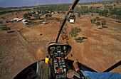 View of cattle herd from above, Cockpit, Sterling Buntine, Lansdowne Station, Kimberley, Western Australia, Australia