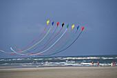Kites, North sea, Lower Saxony, Deutschland
