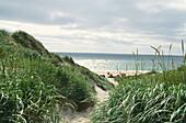 Dunes on Sylt Island, North Frisian Islands, Schleswig-Holstein, Germany