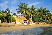 Palmtrees and fishing huts on the beach, Pueblo de los Pescadores, Las Terrenas, Dominican Republik, Caribbean, Amerika