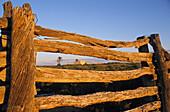 Alter Holzzaun, Ruinen von Dalhousie, Witjira Nationalpark, Simpson Wüste, Südaustralien, Australien