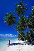 Palmenstrand, Kokospalmen, Pigeon Point Tobago, West Indies, Karibik