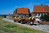 Horse-drawn carriage, Juist, East Frisian Islands, East Frisia, Lower Saxony, Germany