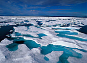 Drift ice, Canadian Arctic