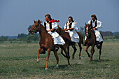 Three people riding horses in traditional clothes, Tradition, Puszta, Hungary