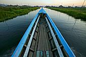 longboat glides through floating gardens, Inle Lake, Myanmar