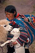 Peruanerin, Baby, Lama Peru, Suedamerika