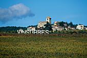Weinanbau, Schild Vinsorres, Provence, Frankreich
