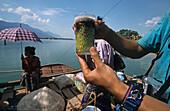 fruit drink, on ferry boat, Laos