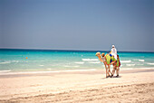 A person riding a camel on the beach, Jumeirah Beach, Dubai, United Arab Emirates