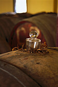 Wine barrels at a wine cellar, Bodega Camilo Castilla, Navarra, Spain, Europe