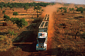 Road train in the desert,  Cattle transport, dirt road of Kimberleys, Kimberley, Western Australia, Australia