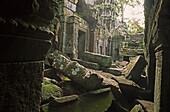 Angkor Wat temple site, Cambodia