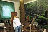 Human and nature, Brockenmuseum NP Brocken, Harz, Germany
