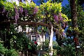 House in botanical garden, Jardim Botanico, Funchal, Madeira, Portugal