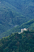Houses in forest of chestnut trees, Carcheto, Orezza Valley, Corsica, France