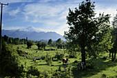 Vulcano Villarrica in an idyllic scenery, Chile