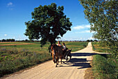 Farmers with carriage on a side road, Lithuania
