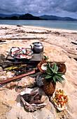 Tropical Cooking, Fish, Tallillis, Rabaul, Papua New Guinea Melanesia, South Pacific