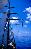 Man jump from the mast, Traditional Sailing Ship, Ocean, South Sea