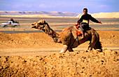 Boy riding on a camel, Desert near Saudi Arabia, Jordan, Middle East