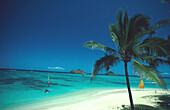 Windsurfing, Lanikai Beach, Oahu, Hawaii, USA Amerika, STUeRTZ S.50