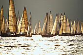 Sailing boats on the shining water of lake, Lago di Garda, Italy