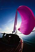 Sailboat in backlight, Lake Chiemsee, Upper Bavaria, Germany