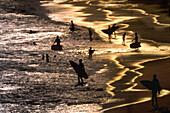 Surfers on the beach at sunset, Rio de Janeiro, Brazil, South America, America