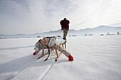 Man pulling daughter in toboggan on snow