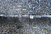 Jubilating Argentinean soccer fans